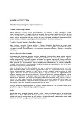 Denetçi Raporu - Petkim PetroKimya Holding A.Ş.