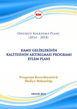 Program Koordinatörü Maliye Bakanlığı