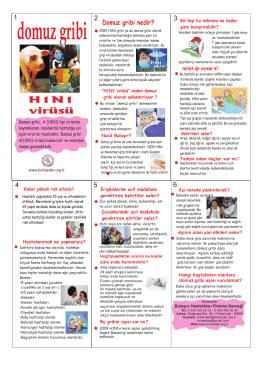 domuz gribi brosur(konak bel) - Bulaşıcı Hastalıkları Önleme Derneği