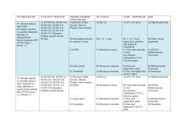 Program Çıktıları ve Değerlendirilme Yöntemleri