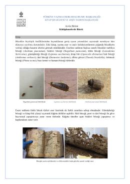 Kütüphanelerde Böcek - Türkiye Yazma Eserler Kurumu Başkanlığı