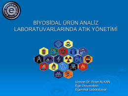 Pınar ALKAN