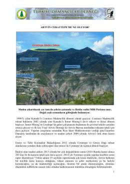 1 ARTVİN CERATTEPE`DE NE OLUYOR! Maden çıkartılacak yer