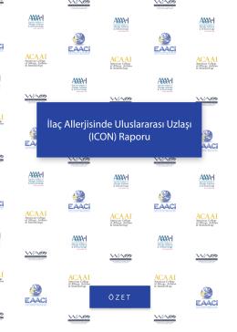 İlaç Allerjisinde Uluslararası Uzla ı (ICON) Raporu