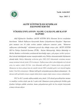 rapora ulaşmak için tıklayınız - Erzurum