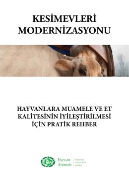 KESİMEVLERİ MODERNİZASYONU