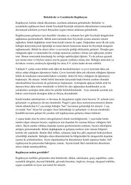 PDF İndir
