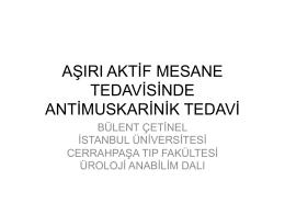 M. Bülent Çetinel
