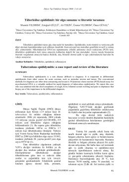 Tüberküloz epididimit: bir olgu sunumu ve literatür taraması