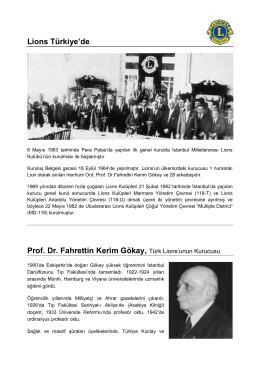 Fahrettin Kerim Gokay