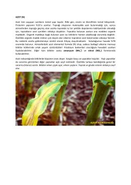 AZOT (N) Azot tüm yaşayan canlıların temel yapı taşıdır. Bitki gen
