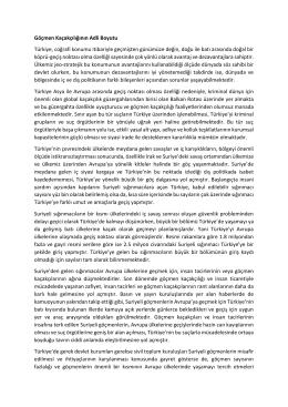 Göçmen Kaçakçılığının Adli Boyutu Türkiye, coğrafi konumu