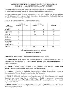 Bodrum SMMMO 2015 Faaliyet Raporu