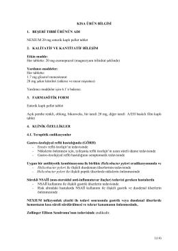İndir (PDF 143kb)
