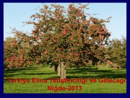 Türkiye Elma Yetiştiriciliği Ve Geleceği Niğde-2013
