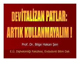 Prof. Dr. Bilge Hakan Şen