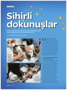 Sihirli Dokunuşlar - Anatolia Hayvan Hastanesi