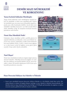 Demir Mazı Mürekkebi - Türkiye Yazma Eserler Kurumu Başkanlığı