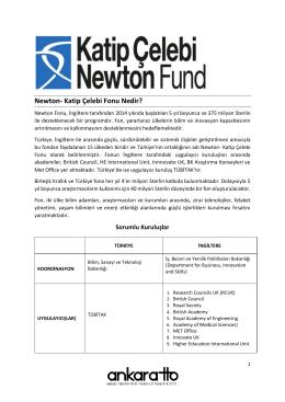 Newton- Katip Çelebi Fonu Nedir?