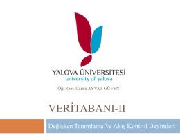 YBP 209 Veritabanı II