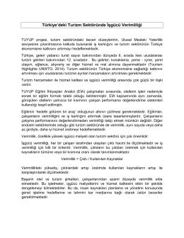 Türkiye`deki Turizm Sektöründe İşgücü Verimliliği