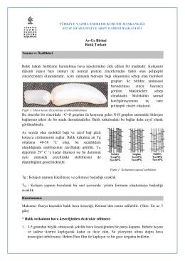 balık tutkalı - Türkiye Yazma Eserler Kurumu Başkanlığı