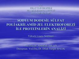 PROTEİNLERİN ELEKTROFOREZİ - Prof. Dr. Dilek TURGUT
