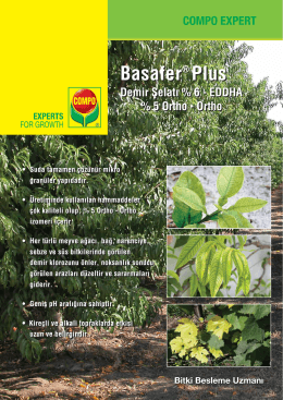 Compo Basafer Plus