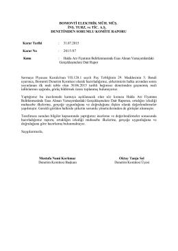 31.07.2015 Tarihli Denetim Komite Raporu