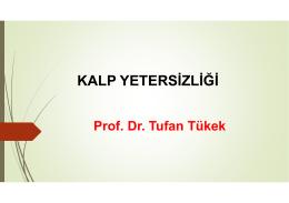 Prof. Dr. Tufan Tükek