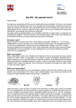 Merkblatt u erklärungtürkisch 09 2012 _2