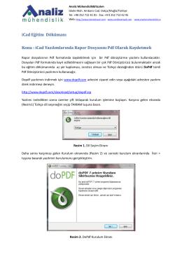 Raporları pdf dönüştürme