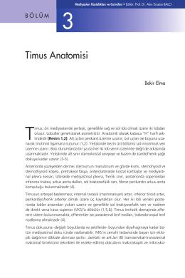 Bölüm 3 - Timus Anatomisi