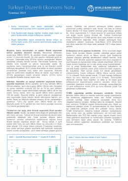 Türkiye Düzenli Ekonomi Notu