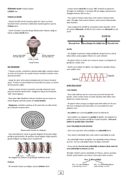 ÖĞRENME ALANI: Fiziksel Olaylar 4.ÜNİTE: Ses Frekans ve Genlik