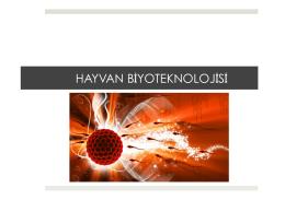 BÖLÜM 8: Hayvan Biyoteknolojisi