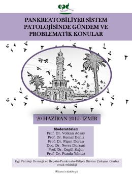 pankreatobiliyer sistem patolojisinde