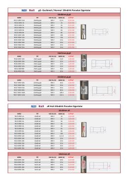 gG- Gecikmeli / Normal Silindirik Porselen Sigortalar