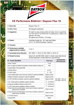 CE Performans Bildirimi / Dayson Flex 10
