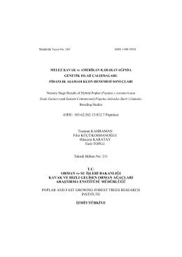 Melez Kavak ve Amerikan Karakavağında Genetik Islah Çalışmaları