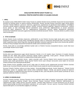 Kurumsal Yönetim Komitesi Görev ve Çalışma Esasları