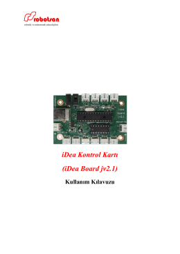 iDea Kontrol Kartı (iDea Board jv2.1)