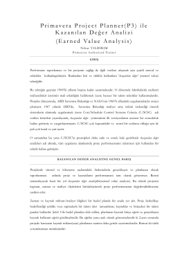 Earned value analysis in p3