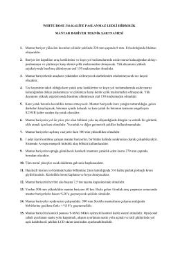 WHITE ROSE 316 KALİTE PASLANMAZ LEDLİ HİDROLİK MANTAR