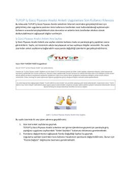 TUYUP İş Gücü Piyasası Analizi Anketi Uygulaması Son Kullanıcı