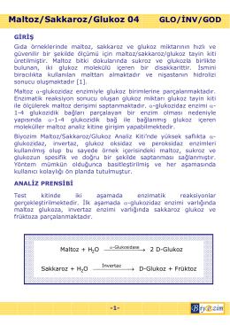 Maltoz/Sakkaroz/Glukoz 04 GLO/ĐNV/GOD -1