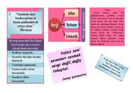 Sevgi-Saygı PDF