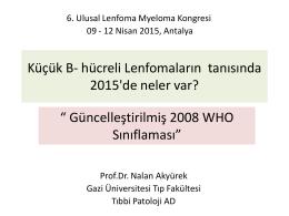 Küçük B- hücreli Lenfomaların tanısında 2015`de neler var?