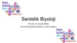 Sentetik Biyoloji-hamdi-kamci