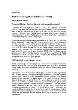 2015 İGR Toplumsal Cinsiyet Eşitsizliği Endeksi (TCEE)